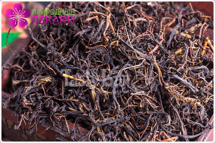 листья иван-чая
