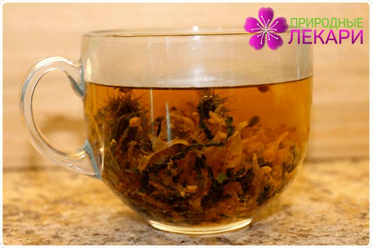 чай с бессмертником