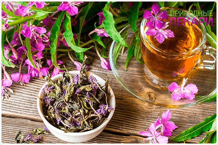 Как сделать ферментированный иван-чай